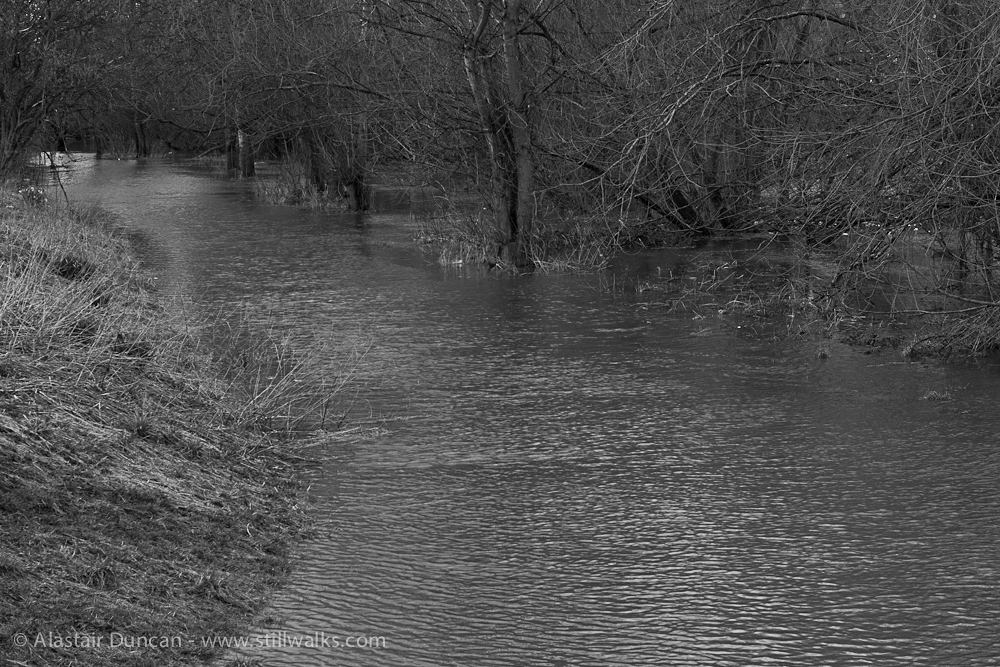 Muddy monochrome waters