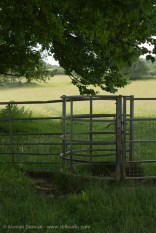 kissing gate 1