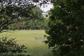 open park