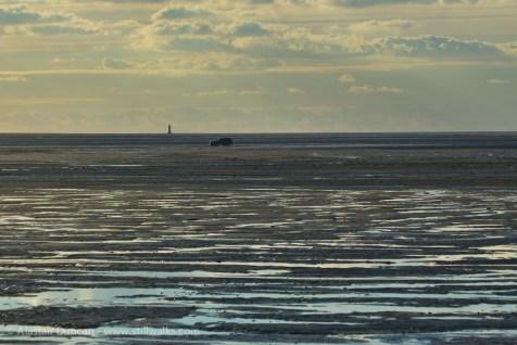 estuary expanse