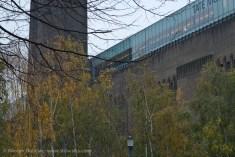Tate Modern trees