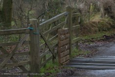 gate and cattle grid