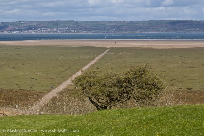 Salt marshes, North Gower