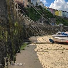 seaweed and ropes