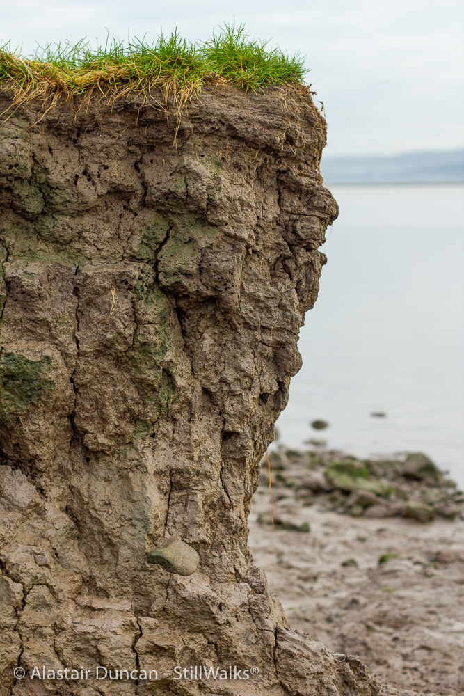 cracked mud outcrop