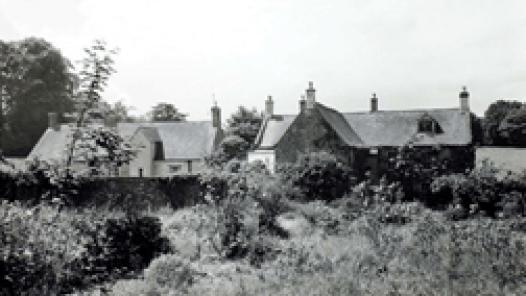 Lamport Court Garden