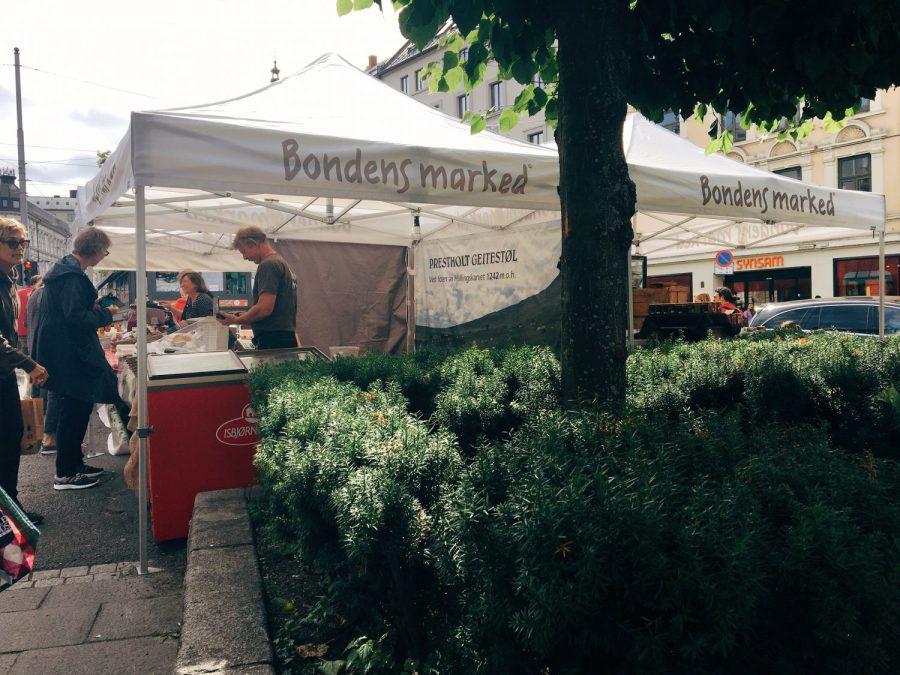 Bondens Marked er i gang! Nå ser jeg frem til å gjøre markedet til lørdagsrituale, og all den digge maten vi skal spise i høst.