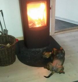 Frida foran brændeovnen!