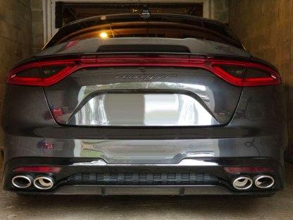 carbon fiber rear stinger text hatch badge emblem