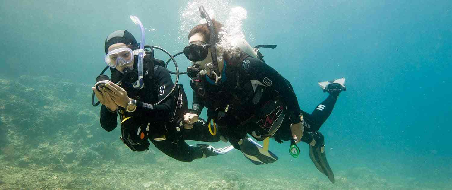 Stingray Divers - PADI Specialty UW-Navigation