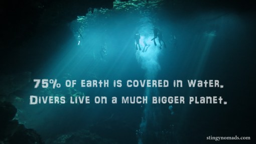 dive planet quote