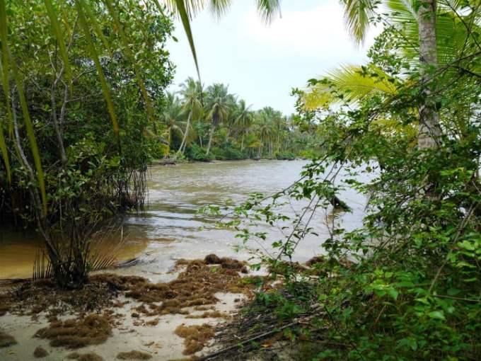Walking towards Bocas Del Drago.