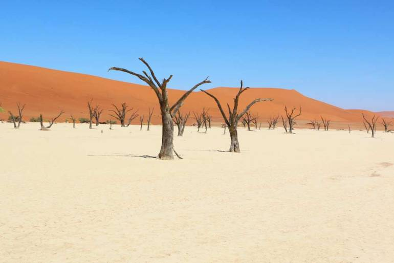 Deadvlei in Sossusvlei a great place for photos