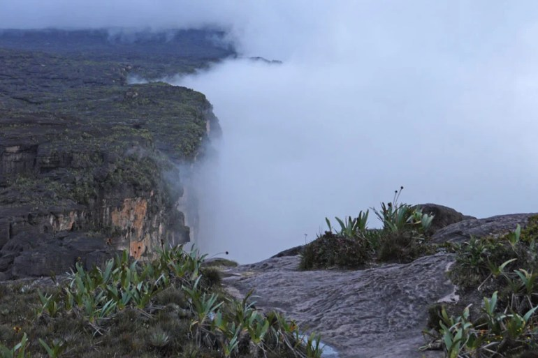 Walking above the clouds on Mount Roraima.