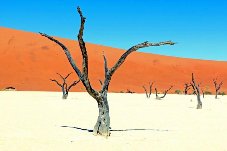 deadvlei at sossusvlei namibia