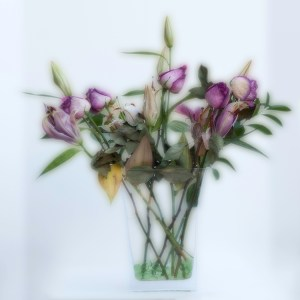 Old Flowers - Honorable Mention, Pictorial Prints