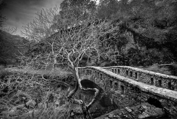 Stone bridges merge with nature to create scenic vistas