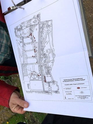 UlrichMierwald 'Kartierung der Stinzenpflanzen im Neuwerk-Garten, Schloss Gottorf. Corydalis Solida. 2002.