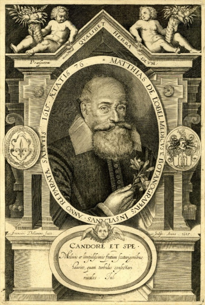 De Lobel 1571/1572