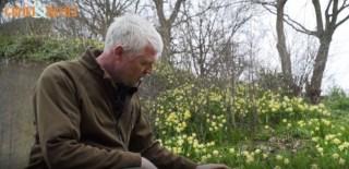 Gerard van Buiten over stinzenplanten.