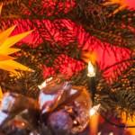 Weihnachtsmarkttest Loschwitz