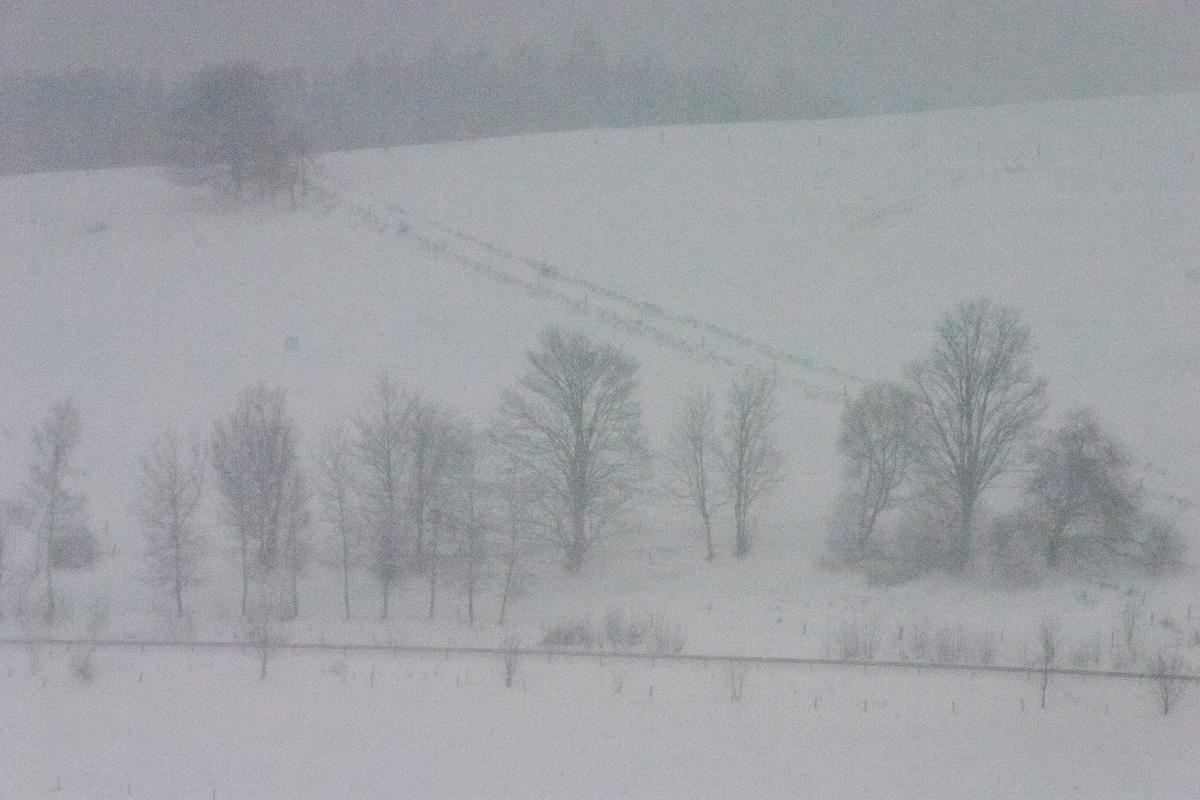 Schneesturm bei Seiffen