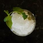 Mint Julep// justifying an ice crusher