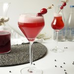 Cranberry-Black Pepper Shrub Cocktail