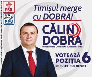 Colin Dobra - 300x25px