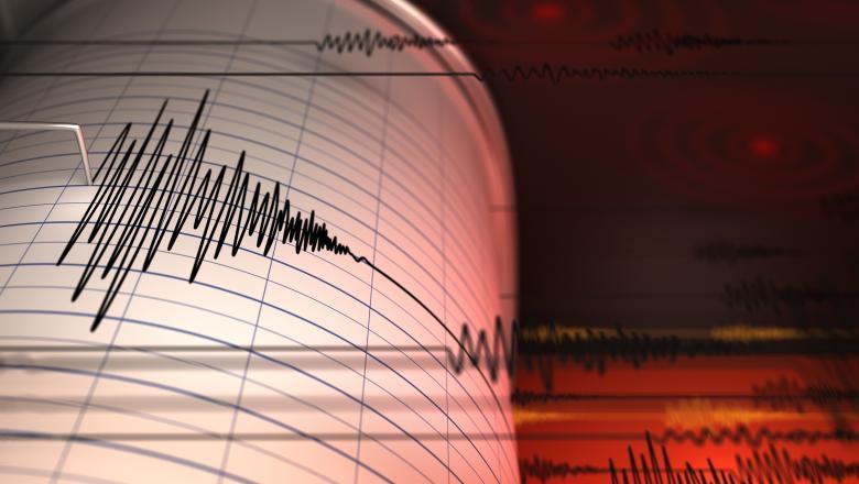 Cutremur în Buzău. Seismul s-a produs la adâncimea de 104 km