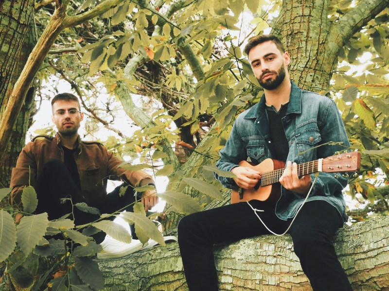 An interview with slenderbodies