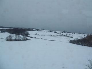 Fields and fields of undisturbed snow