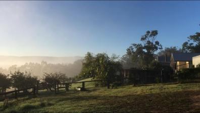beautiful morning on our farm / rána na farmě, Megalong Valley