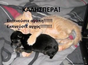 Read more about the article Εισπνεύστε αγάπη!!!!!! Εκπνεύστε αγχος!!!!!!!! Καλησπέρα!!!
