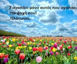 Σ αγαπάει μόνο αυτός που αγαπάει την ψυχή σου.Καλημέρα και καλή βδομάδα…