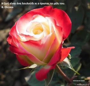 Η ζωή είναι ένα λουλούδι κι ο έρωτας το μέλι του. Β. Ουγκώ