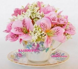 Καλημέρα….Καλό Σαββατοκύριακο να Έχετε Με Χαρά Αισιοδοξία και Υγεία!!!