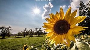Καλημέρα καλό μήνα σε όλους!!!