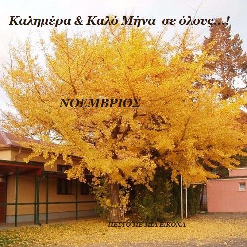 Εικόνες για τον μήνα Νοέμβριο...! ΠΕΣΤΟ ΜΕ ΜΙΑ ΕΙΚΟΝΑ