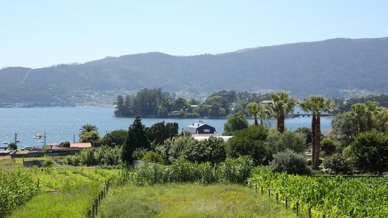 Vue panoramique sur la Ria de Vigo depuis votre chambre à Redondela