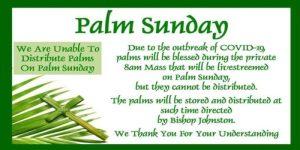 No Palms On Palm Sunday