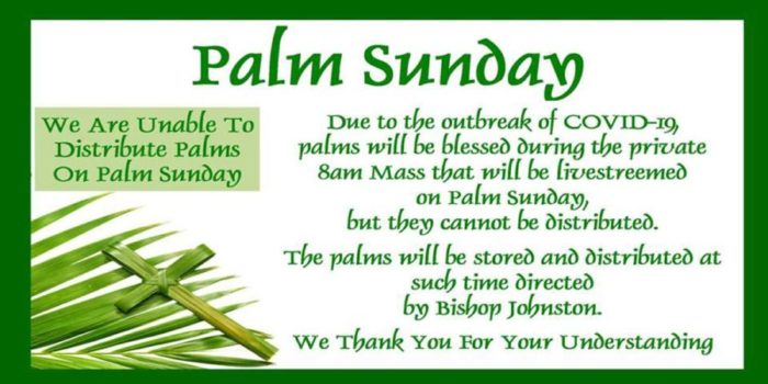 No Palms On Palm Sunday