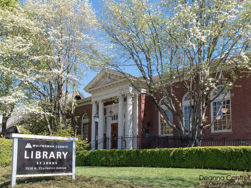 St. Johns Library with dogwood trees in bloom