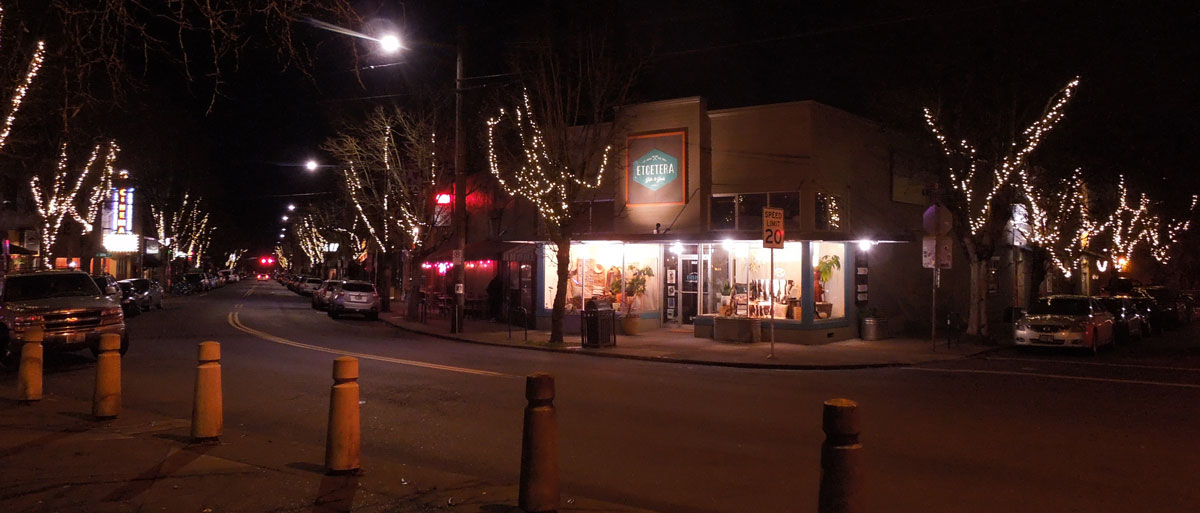 St. Johns tree lights