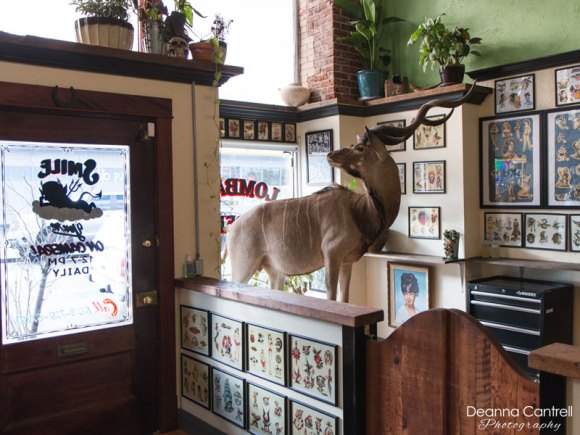 Lombard Street Tattoo and taxidermy antilope