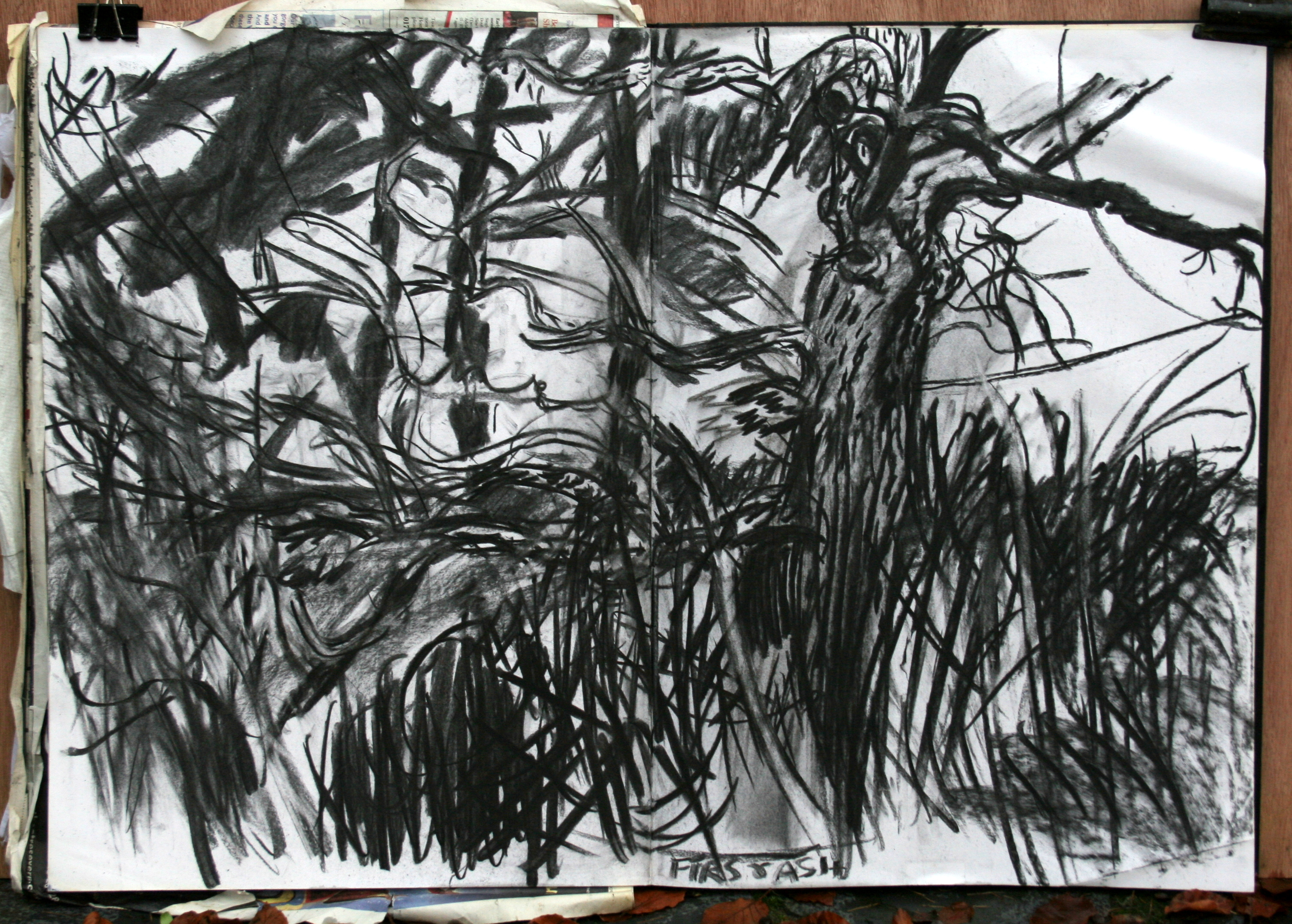 Charcoal drawing copyright Stephen West