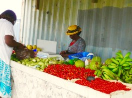 Local produce at Jackson Farm Stand on St. Croix (Bill Kossler photo)