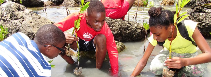 Youth Ocean Explorers to Expand Program With Donation From Saltchuk's Tropical Shipping