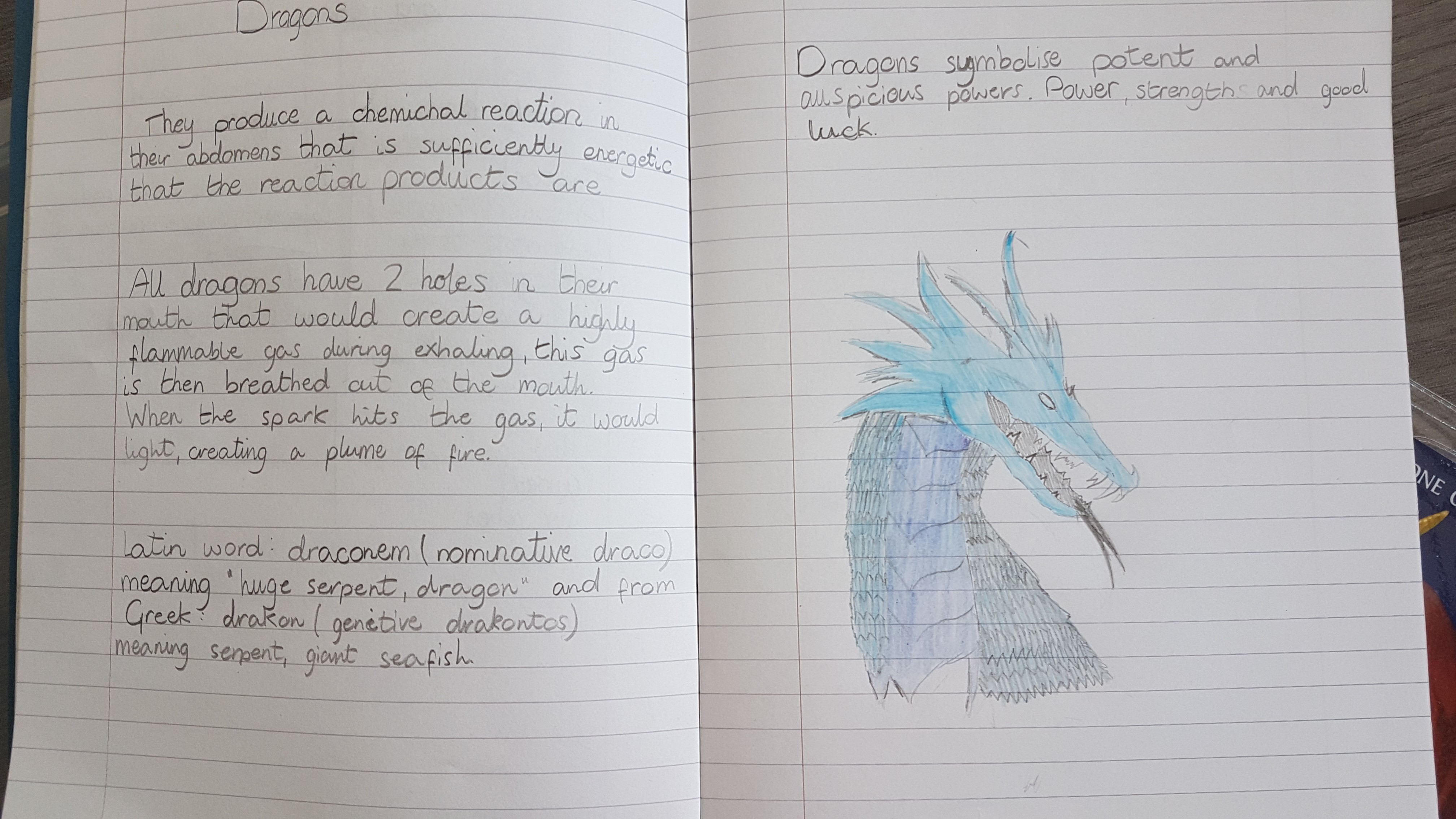 Exploring the anatomy of dragons with P7 readers | St John's