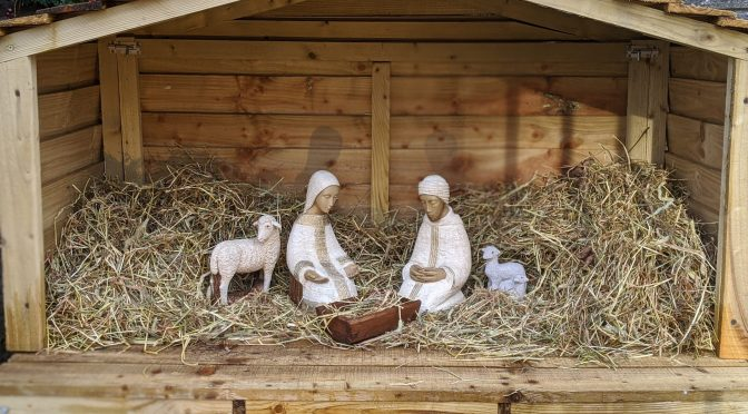 9. Mary and Joseph Arrive